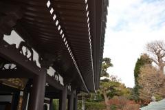 「縦のリズム_鎌倉長谷寺」中村 定さん(S44)