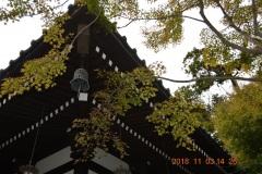 「鐘と楓_鎌倉長谷寺」中村 定さん(S44)